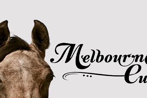 Melbourne Cup @ TheTillerFarm