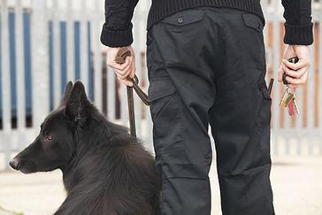 Guardia de seguridad con perro