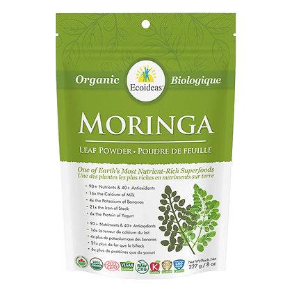 Moringa- Ecoideas