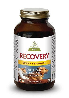 Recovery SA- Purica
