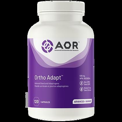 Ortho Adapt- AOR
