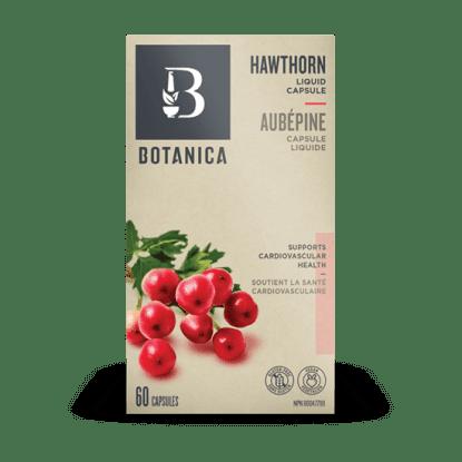 Hawthorn- Botanica