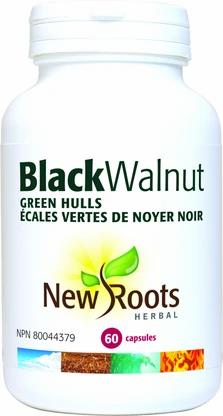 Black Walnut- New Roots