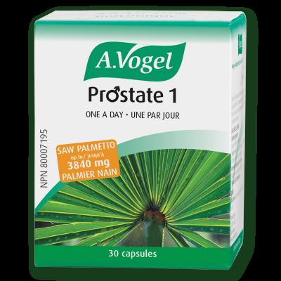Prostate 1- A. Vogel