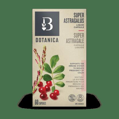 Super Astragalus- Botanica
