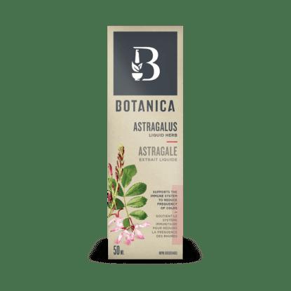 Astragalus Liquid Herb- Botanica