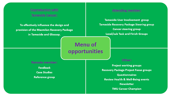 Menu of Opportunities.PNG