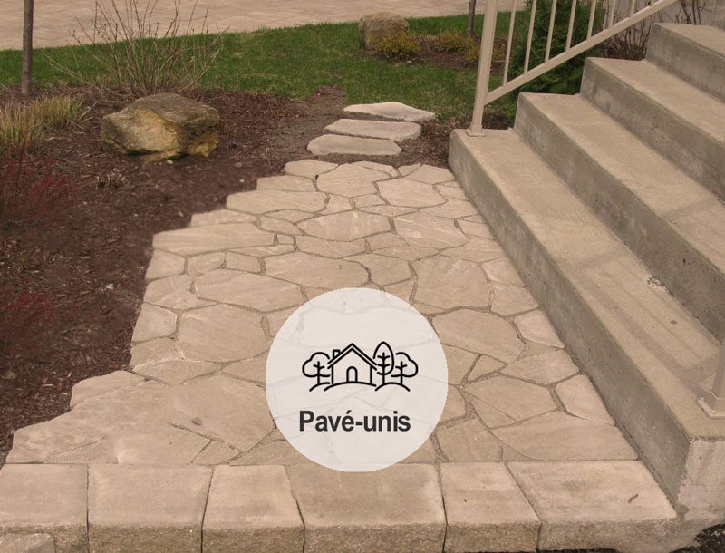 image-intro-pave-unis-mgmt