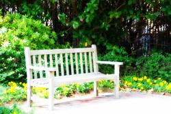 bench-646941_640