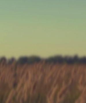 Hintergrund-Video.jpg