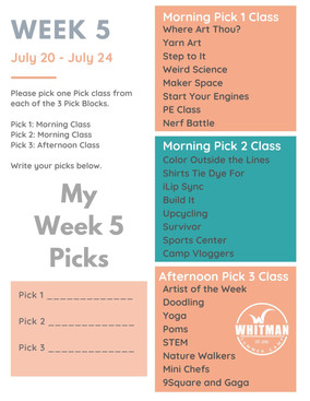 Week 5 - Day Camp Pick Classes