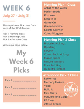 Week 6 - Day Camp Pick Classes