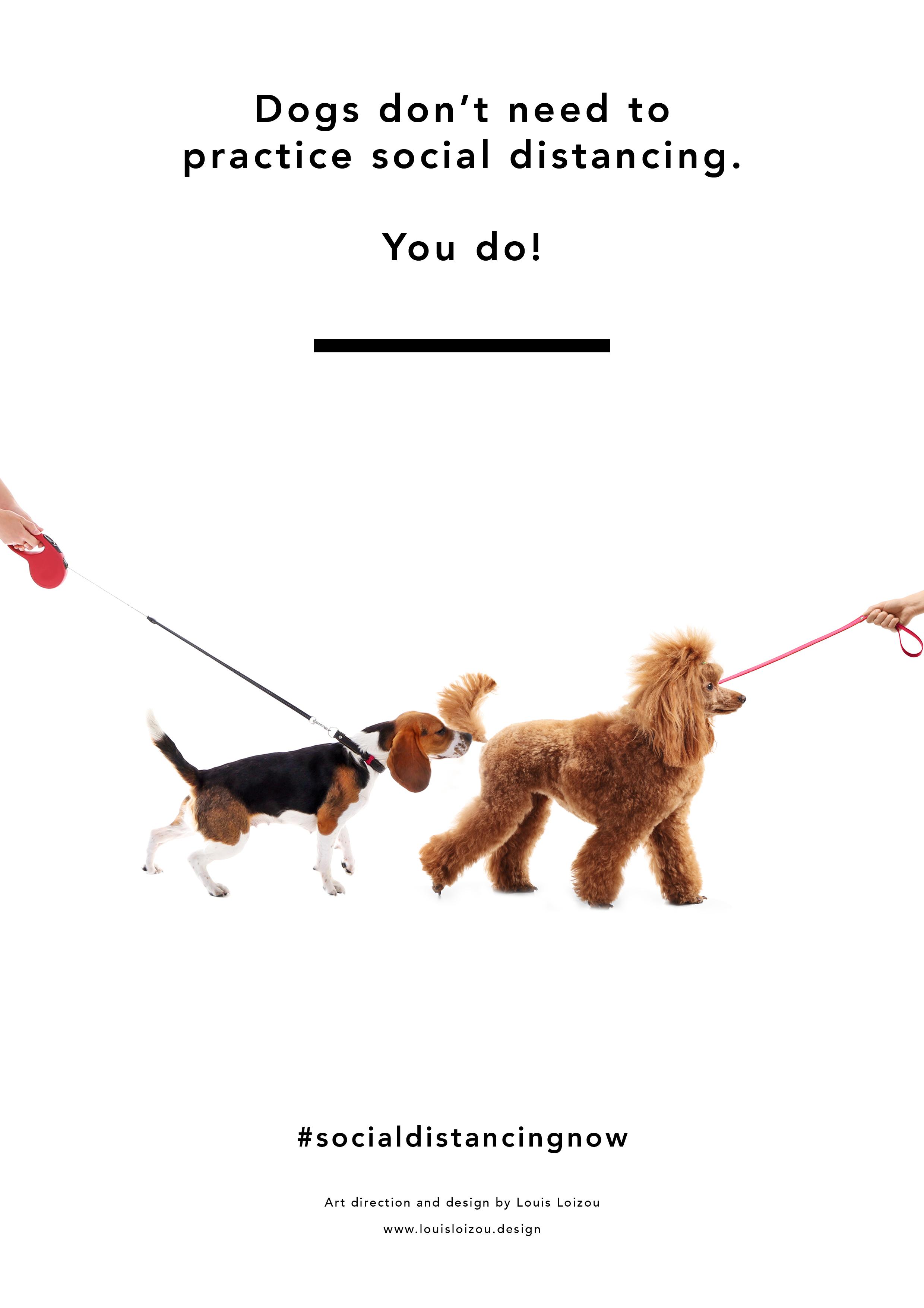 Dogwalkers x Social Distancing