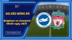 Soi kèo - Brighton vs Liverpool, 19h30 ngày 28/11, Ngoại hạng Anh