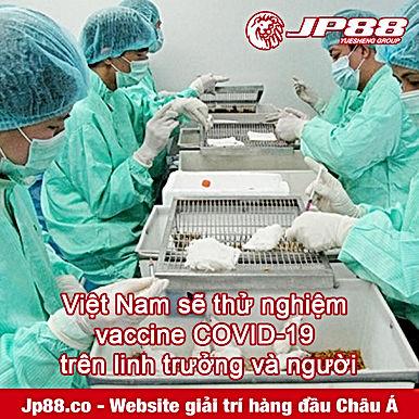 Bước tiến quan trọng: Việt Nam sẽ thử nghiệm vaccine COVID-19 trên linh trưởng và người