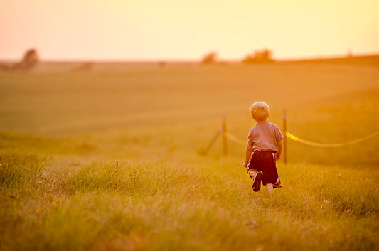 Boy playing in tallgrass