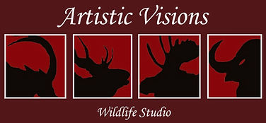 Artistic Visions Taxidermy
