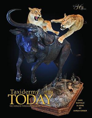 World Class Taxidermy - Custom Lion and Cape Buffalo Taxidermy Lifesize
