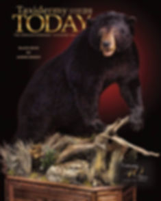 TT Black Bear Cover.jpg