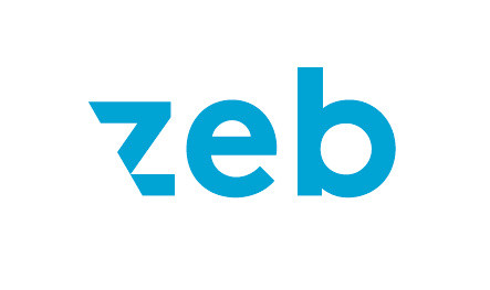 zeb Consulting Workshop