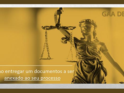 Como Anexar Documentos ao Processo de Habilitação à Adoção