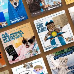 Patota de Patas Pet Shop