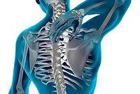 Quiropraxia - Essentia Clinic