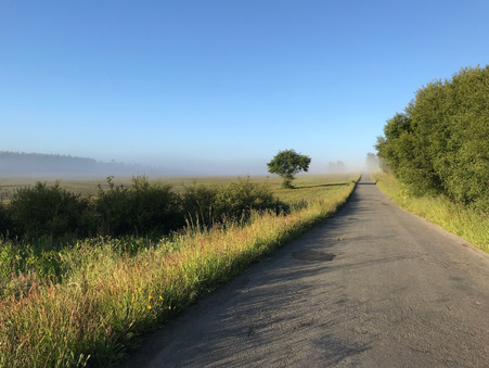 The English Way - highlights from a solo walking holiday in Spain
