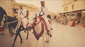 Q Life - Qatar in Colour