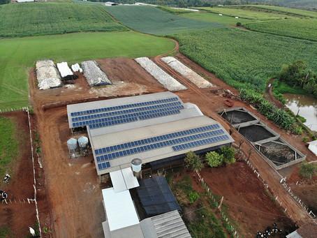 Epi Energia avança com sistemas fotovoltaicos no setor rural