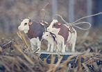 Boite / coussin à alliances vaches fixées sur rondin de bois, pour mariage champêtre agricole, création Your Big Day