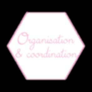 Organisation & coordination_Plan de trav