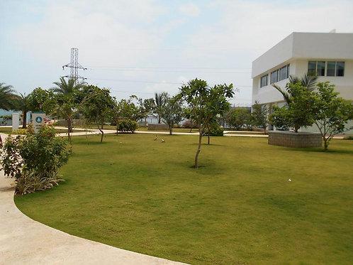 3 BHK 2250 sq ft Apartment at Marine Drive, Kochi
