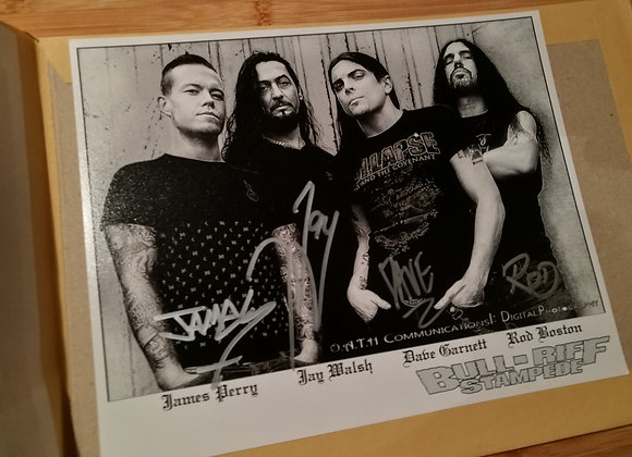 ENRAGING THE BEAST PROMOCARD - SIGNED