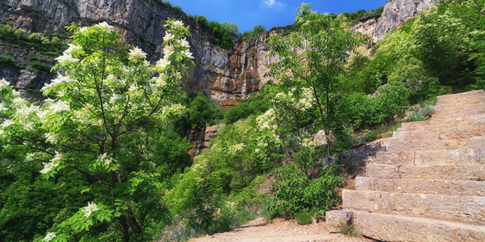 Йога сред природата: водопад Скакля и Вазовата екопътека