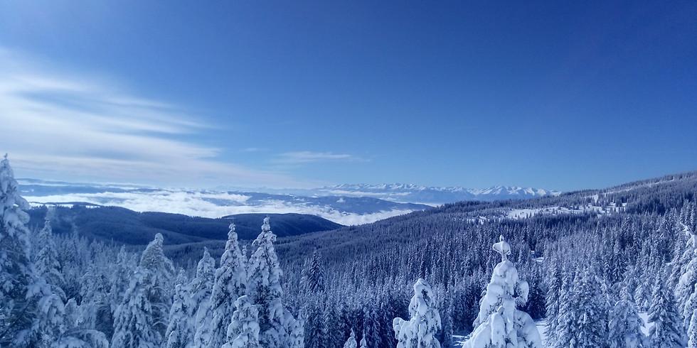 Връх Зекирица - снежни гледки към алпийска Рила