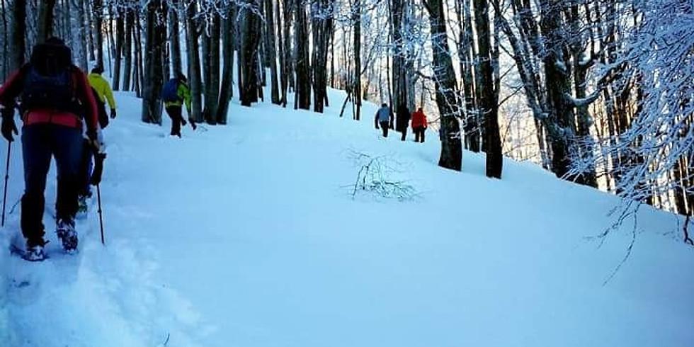 Зимно изкачване на връх Ком