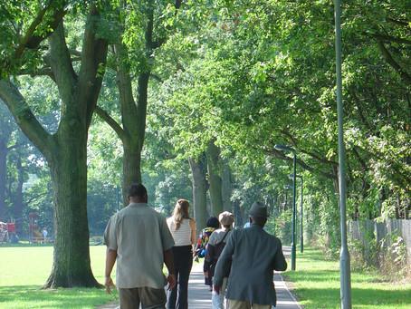 FREE Walking for Health training on Wed 5 Feb 2020