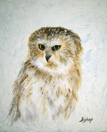 # 282 Owl