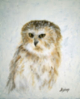 Owl #281