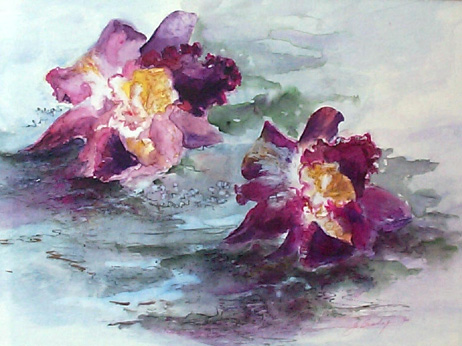 #148 Orchids
