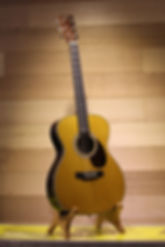 Martin Car talk Guitar