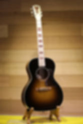 Gibson Elvis Costello