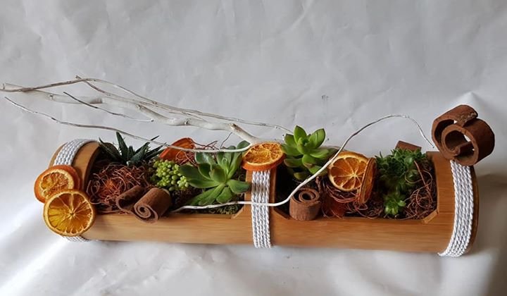 centre de table avec succulents