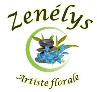 logo_voiture_Zenélys.jpg