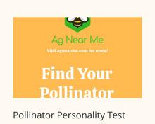 Pollinator Personality Questionnaire ima