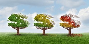 3 Easy Seasonality Tips in Digital Marketing