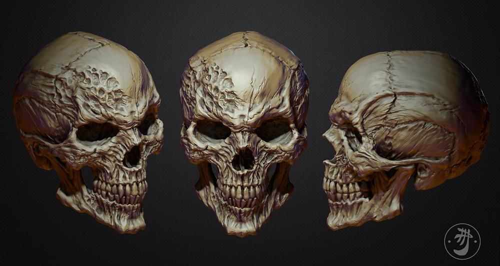 skull_011.jpg