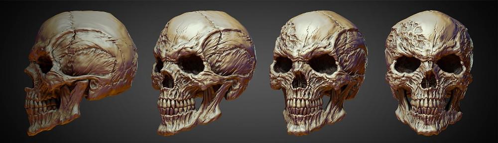 skull_013.jpg