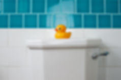 Rubber ducky on repaired toilet tank lid